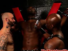 Interracial trio shave black sub before anal