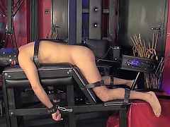 Mistress in lingerie watching assfucked sub